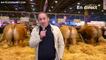 """En direct """"live"""" du Salon de l'Agriculture"""