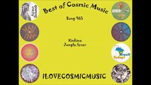 Best of Cosmic 965 Afro Electro Tribal Ethno Ragga Triphop Brazil World Music Song (World Music 720p)