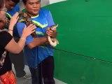 Une fille veut faire un bisou à un serpent
