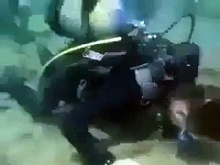 Holding deep-sea congregation , Most effective video