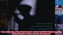 Turquoise Days The Weird World of Echo and The Bunnymen The Weird World of Echo and the