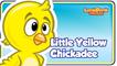 Little Yellow Chickadee