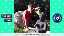 ULTIMATE Josh Darnit Vine Compilation   NEW FUNNY Vine Videos 2015