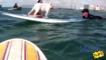 California Surf Surfing Dogs - Tony Perri, Surfs Up Studios, Producer & Director