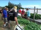 13th International Aquaponics and Tilapia Aquaculture Course