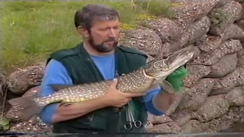 Go Fishing with John Wilson Weirpool Magic