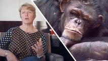 Interview : 3 raisons pour lesquelles nous devons sauver les primates