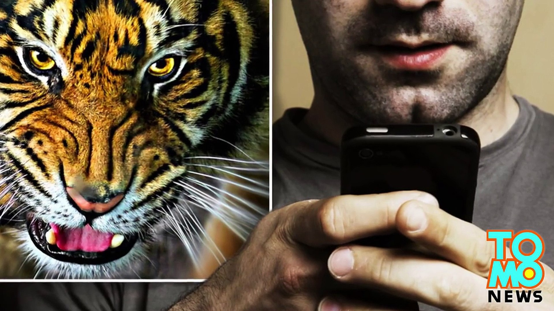 Animal sex: Illegal 'tiger sex' video turns out to be fake, ruins mans life - compilation
