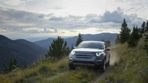 LAND ROVER Discovery: capacidades off road