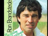 Ron Brandsteder Engelen Bestaan Niet (Opening Credits Met Bumper, Opening Lied Van De TV Show Ron's Honeymoon Quiz In Nederland Vanaf 187 Tot 1996 (Single Version, Radio Edit.)