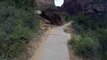 Backpacking into the  Te Araroa trail HD