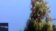 Mexico UFO Sighting - Meditating form in UFO