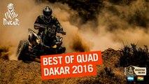 Quad - Best Of Dakar 2016