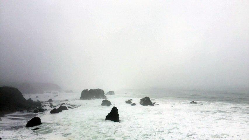 Bodega Bay Waves