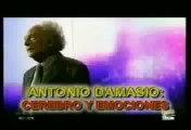 El cerebro y emociones Antonio Damasio