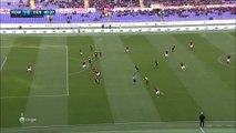 1-0 Radja Nainggolan Goal Italy  Serie A - 17.01.2016, AS Roma 1-0 Hellas Verona