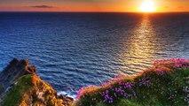 15 Minute Deep Healing Meditation Music: Relaxing Music, Calming Music, Soothing Music, Re