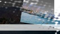 Aqaba Shore Excursions - Ibis Egypt Tours