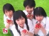 Pub Zone - House Fruite Japan Japon