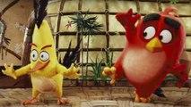 ANGRY BIRDS LA PELÍCULA. Teaser tráiler en español HD. Próximamente en cines.