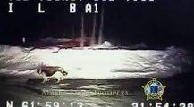 Ce chien jappe comme un fou pour que le policier le suit, puis le policier découvre ça en le suivant!
