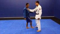 how to do uchi mata for sambo, bjj and judo
