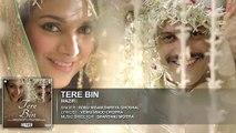 Hindi song 2016 'TERE BIN' Full AUDIO song   Wazir   Farhan Akhtar, Aditi Rao Hydari   Sonu Nigam, Shreya Ghoshal