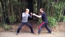 diferentes tipos de artes marciales