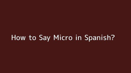 How to say Micro in Spanish