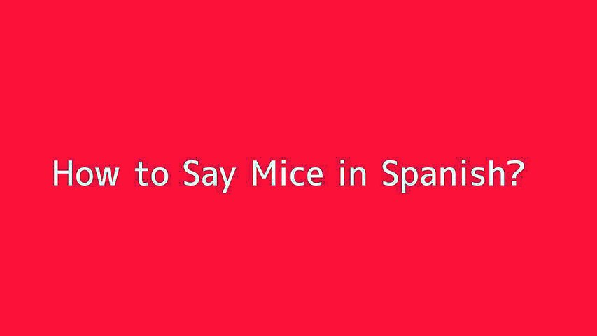How to say Mice in Spanish