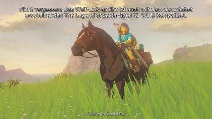 The Legend of Zelda : Twilight Princess HD : Fonctionnalités des Amiibo