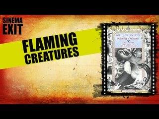 Flaming creatures - recensione #lalistademmerda