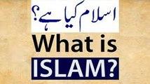 Deen .Islam .Islam Kya Hai . What is Islam . Deen keya ha . Deen ke demand keya ha . Deen keya chata ha . Deen keya ha . - Maulana Tariq Jameel...