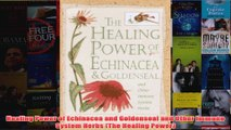 Download PDF  Healing Power of Echinacea and Goldenseal and Other Immune System Herbs The Healing FULL FREE