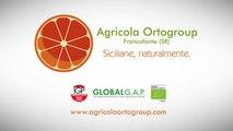 Agricola Ortogroup - Siciliane, Naturalmente