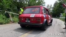 Rally Circuito di Cremona 2014 Modern & Historic Rally Cars Sound