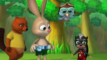 Wild Animal Baby Explorers | Beaks & Bills + Mighty Oak Tree | S1E3