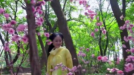 蘇染染追夫記 第11集 Su Ran Ran Zhui Fu Ji Ep11