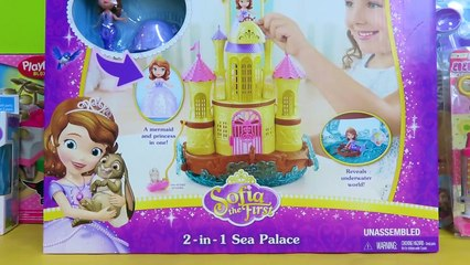 The Captains Doll Resource Learn About Share And Discuss The