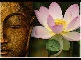 Lotus Flower Spoken Word Hip Hop Poetry