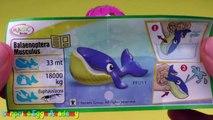 5 Kinder Surprise Eggs - Kinder Überraschung Maxi, Kinder Toys, Polly Pocket Toys