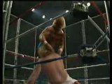 Steel Cage Big John Studd