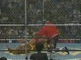 Hulk Hogan vs Ric Flair (HH94 Part Two)