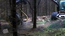 Incredible Tree Cutting Machine Loggers Video  - video