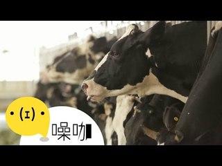 【翻轉吧,人生】自己的牛奶自己救 - 龔建嘉