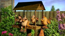 Animals in the Hood Creature Comforts Part 1 (HD)