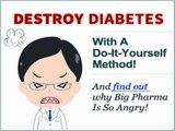 Type 2 Diabetes Destroyer - Reversing Your Type-2 Diabetes