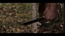Un couteau très aiguisé qui peut couper un arbre en un coup