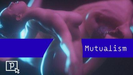Mutualism - Pépites du 28/01 - CANAL+