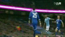 Manchester City vs Everton 3-1 ~ All Goals & Highlights